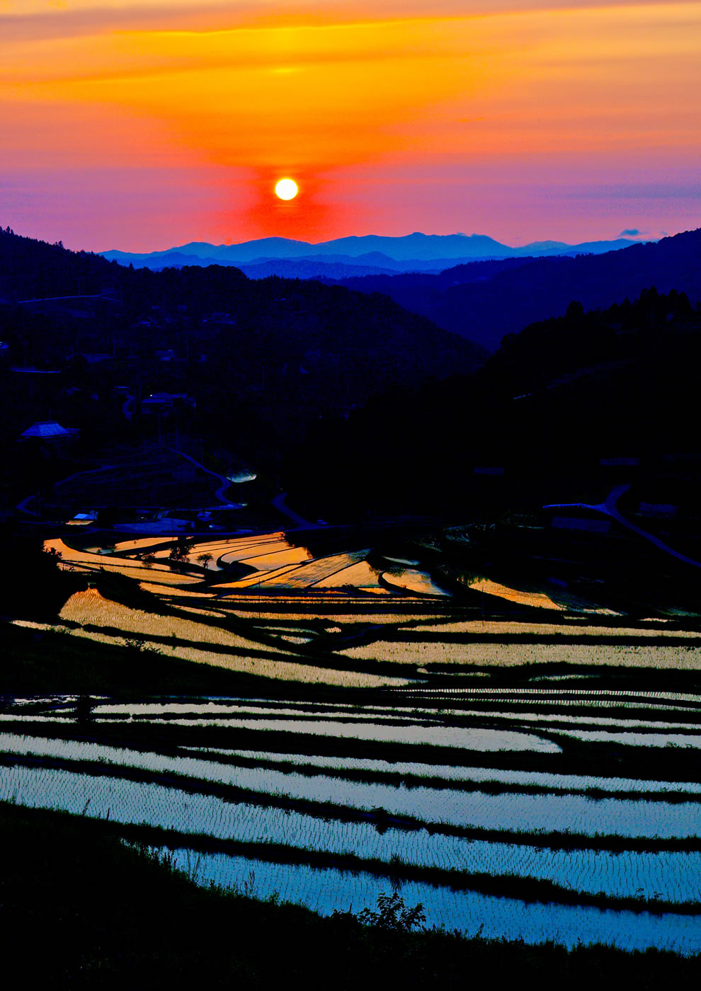 Evening sun in terraced paddy fields