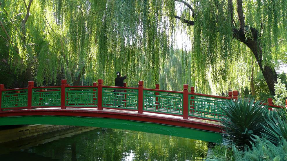 Chinese Gardens - Beijing Canal Garden - China