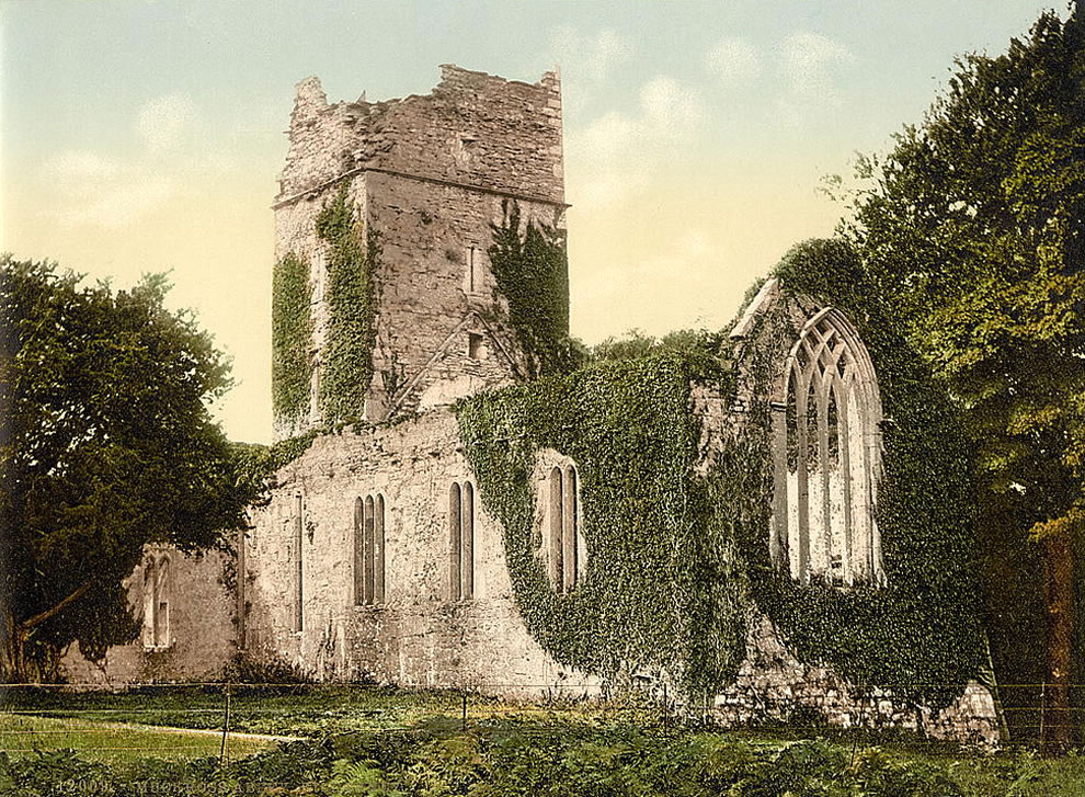 Muckross Abbey, Killarney. County Kerry, Ireland photochrom