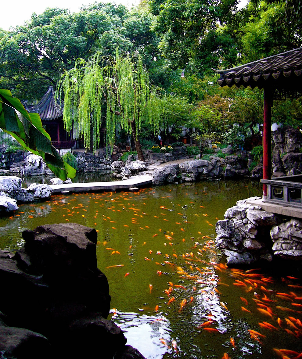 21 stunning superbly serene chinese gardens for Koi pond garden