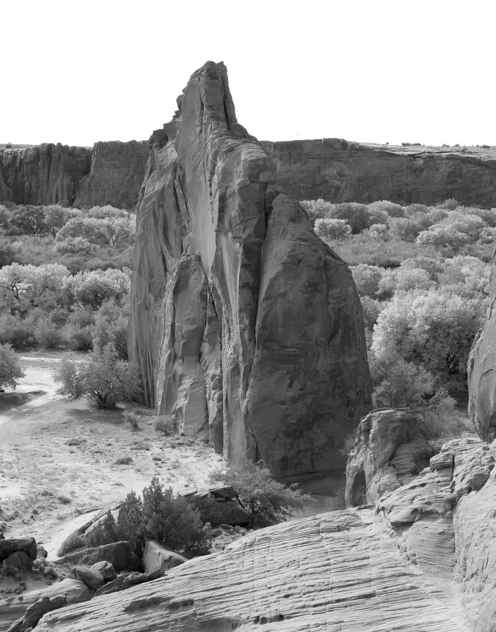view of Petroglyph Rock area at Canyon de Chelly