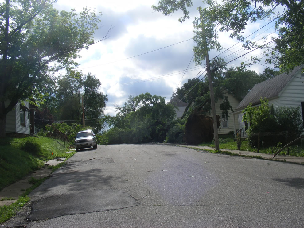 You shall not pass - tree downs uprooted and blocking roadway and smashed house