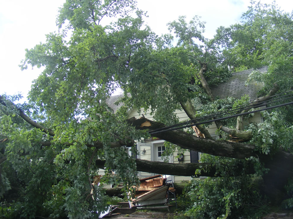 elderly woman trapped inside house after storm uproots trees - massive wind damage in boonville indiana