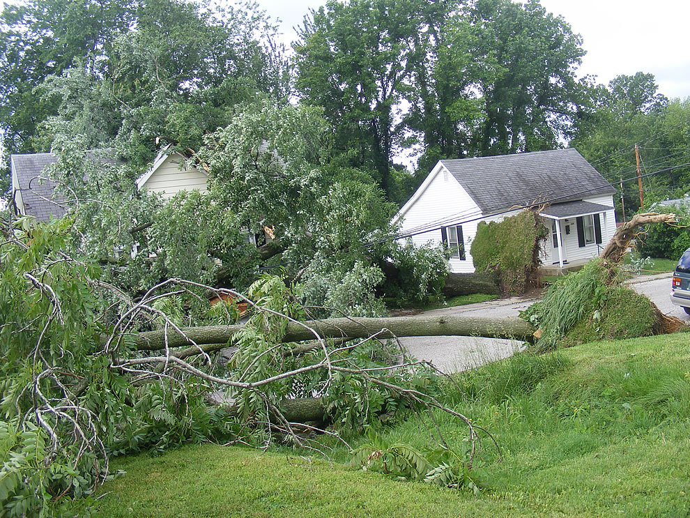 storm - boonville indiana -many trees down on houses after night storm