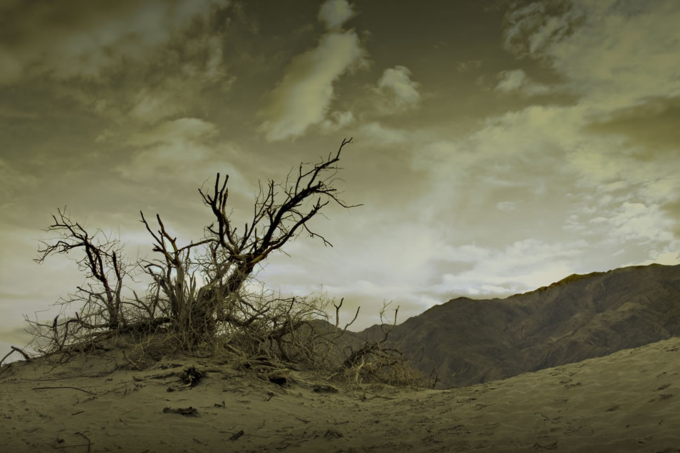 Endeavor - Death Valley