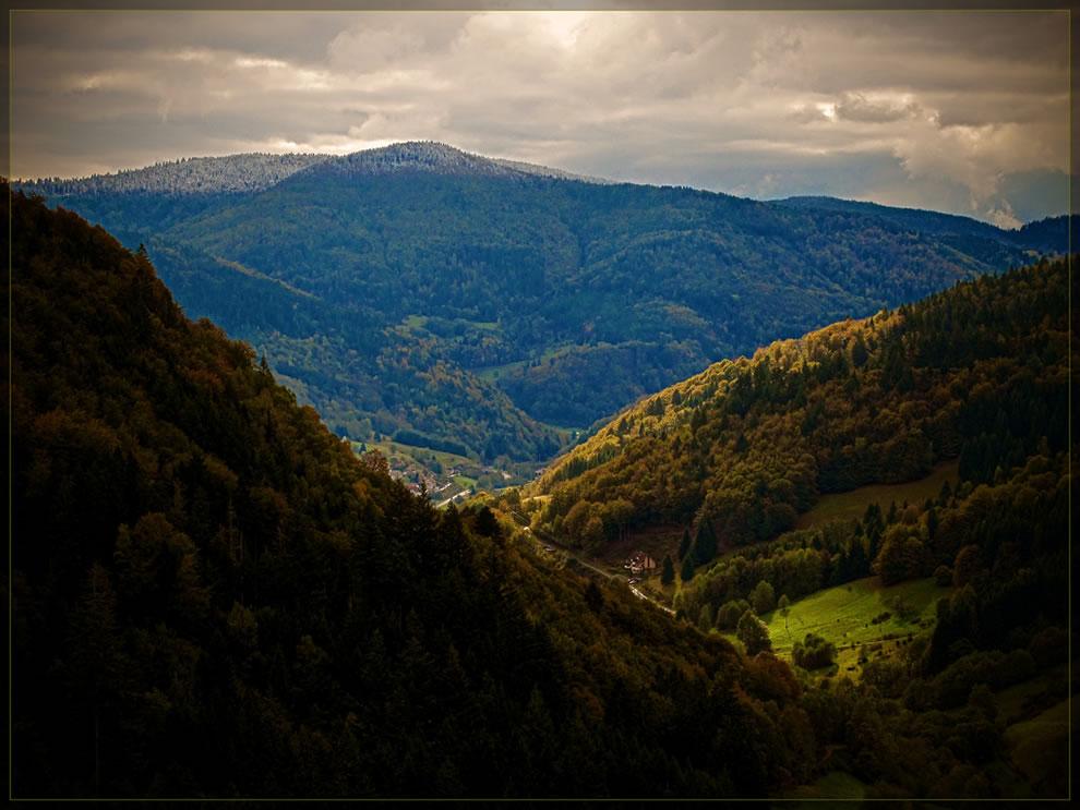 Fall Schwarzwald