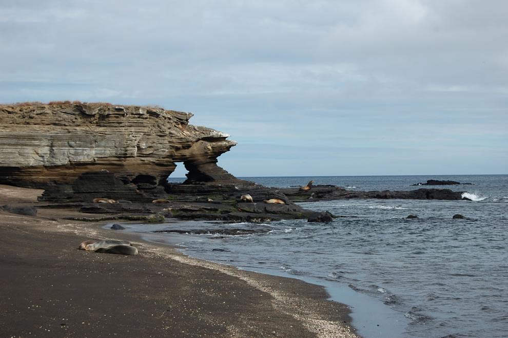 Ecuador, Galapagos Islands - An interesting rock formation and sealions at James Bay, Santiago Island
