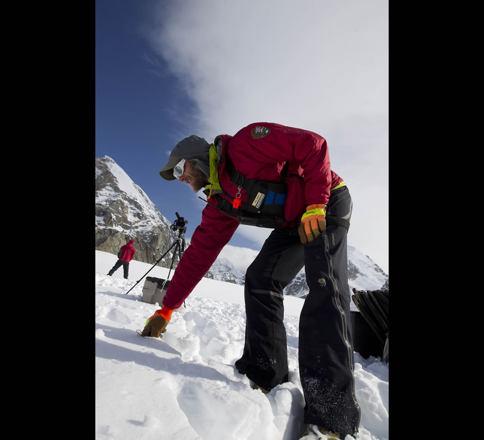 National Park Mountaineering Ranger probes the snow looking for crevasses before beginning to stage survival equipment for the Base Camp on the Lower Kahiltna Glacier