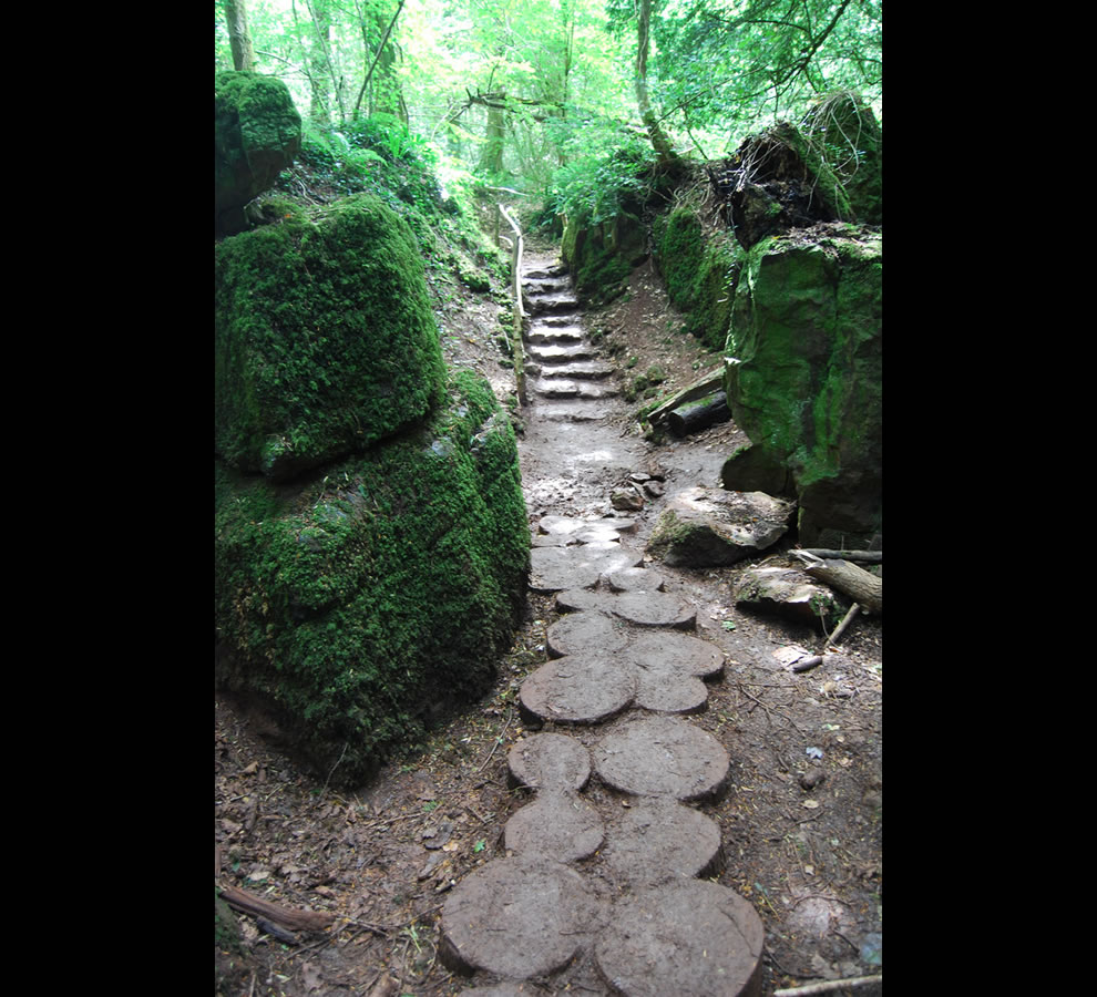 Puzzlewood pathways