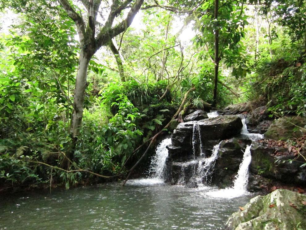Waterfall near Jatun Sacha, San Cristóbal, Galapagos, Ecuador