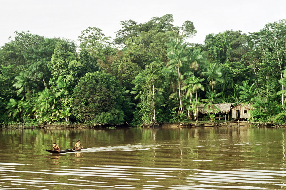 A typical house in the Amazon