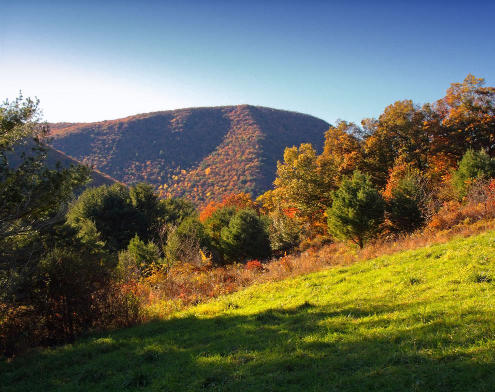 Autumn Allegheny Plateau