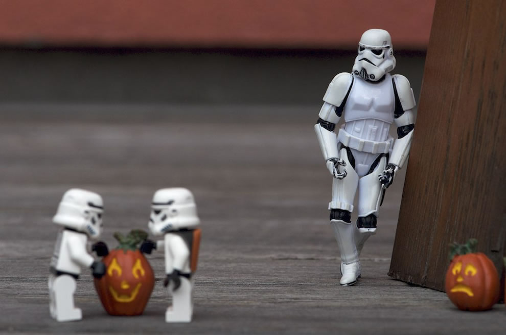 Stormtroopers choosing pumpkin