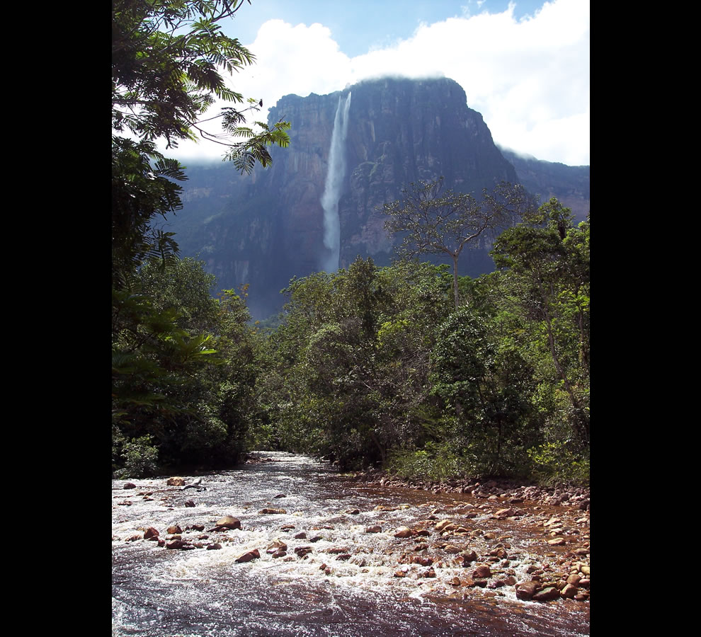 Treking through the jungle to Angel Falls