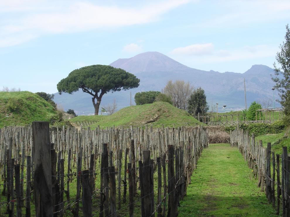 Vesuvius Looms