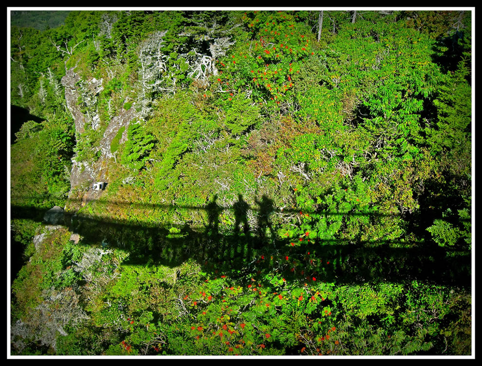 Shadow - Grandfather Mountain Mile High Swinging Bridge