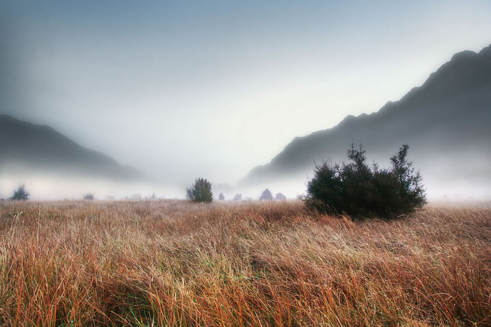 &#039;White Blanket&#039;, New Zealand, Milford Sound, Evening Fog