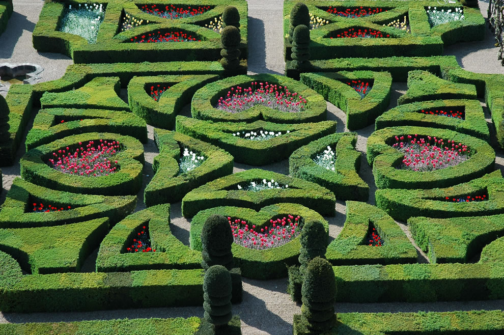 Renaissance Tender Love gardens of Villandry