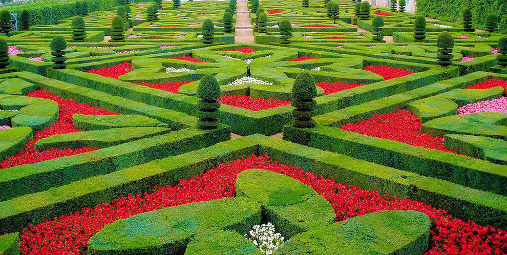 Topiaries at the château de Villandry gardens