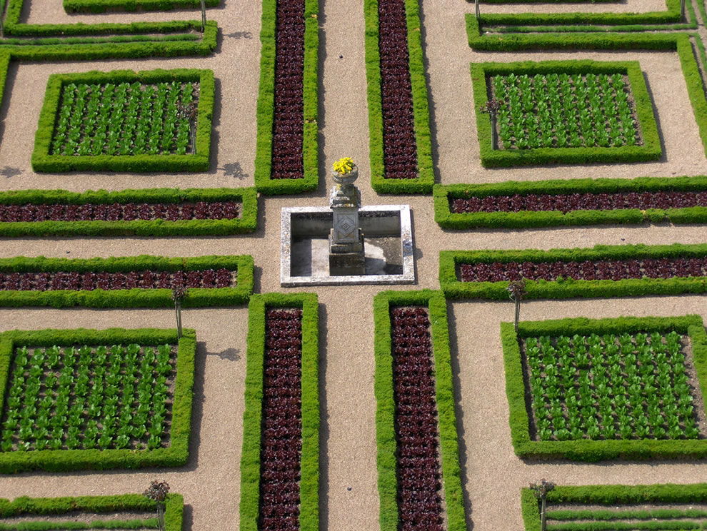 Villandry -- world's most organized vegetable garden