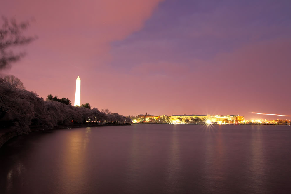 Night time at the tidal basin in Washington DC during the Cherry Blossom Festival