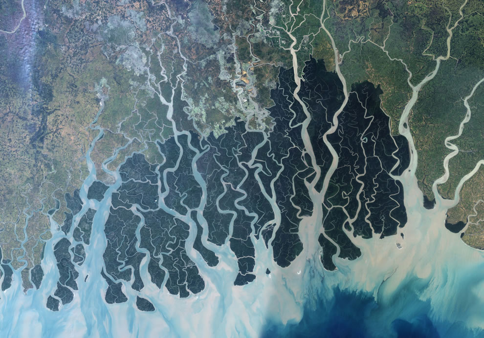 Sundarbans, Bangladesh, shrimp farms