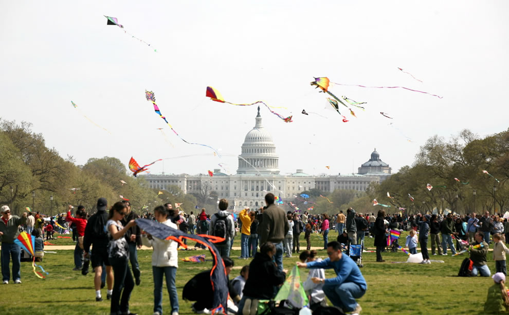 White House - Cherry Blossom & Kite Festival in Washington DC