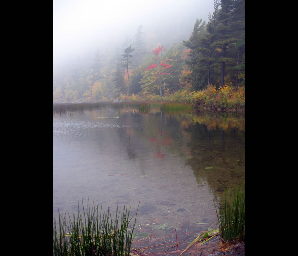 Autumn at The Tarn, Acadia NP