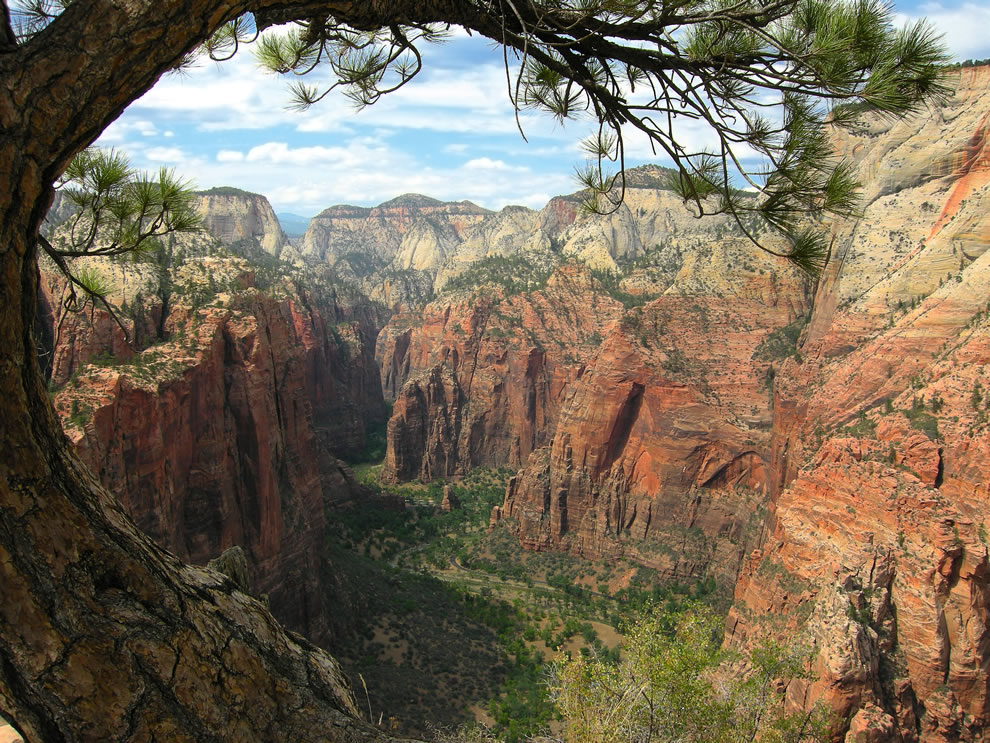Breathtaking view (north) from the Angels Landing trail looking northward to the Narrows, Zion National Park, Utah, USA