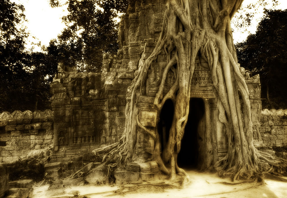 The Secret Cave, Enshrouded in Roots Found deep in the jungles of Cambodia
