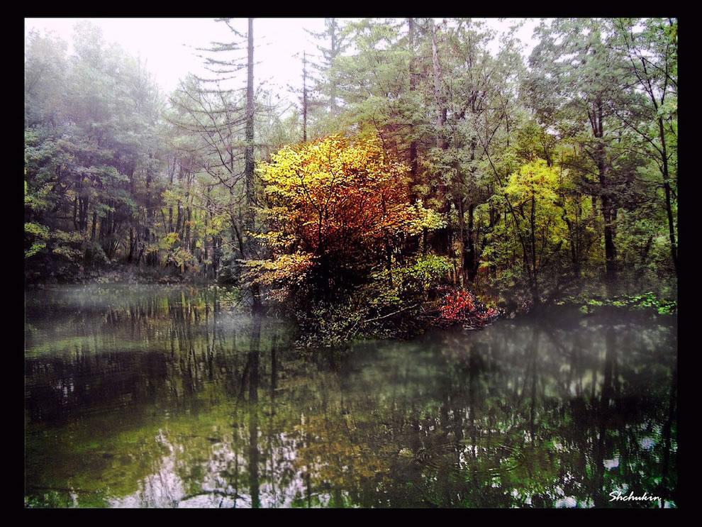 A foggy day at Plitvicka lakes (Croatia)