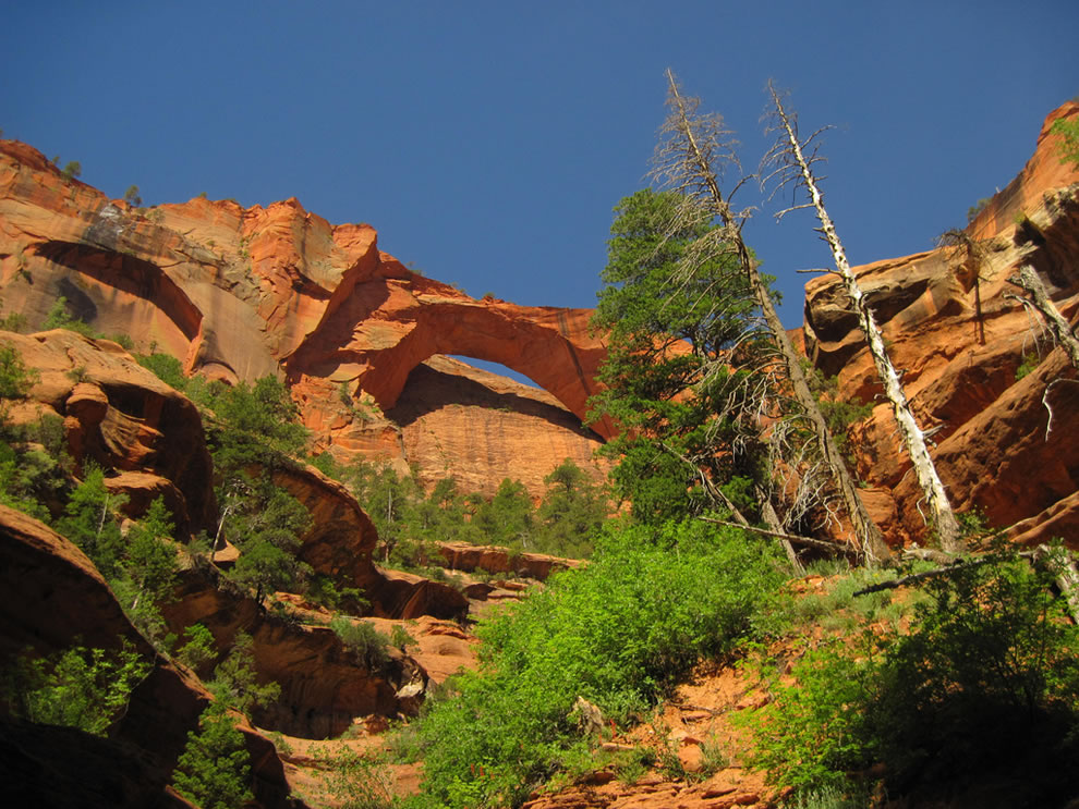 Kolob Arch in Zion&#039;s backcountry may be the second longest in the world