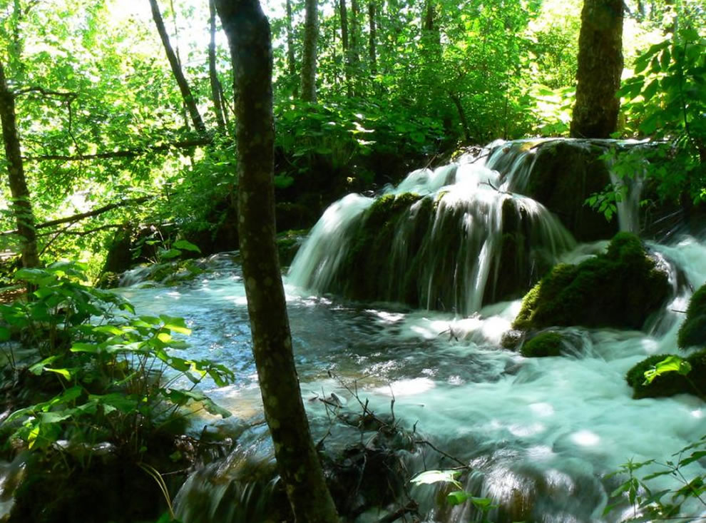 Small waterfall at the Plitvice Lakes