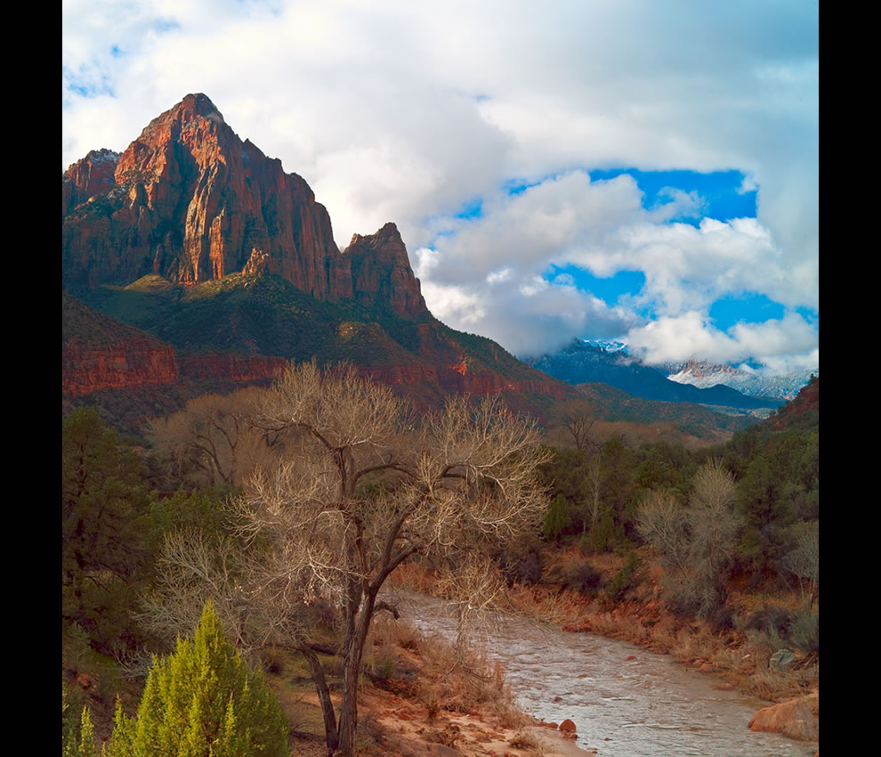 The Watchman and the Virgin River at Zion National Park