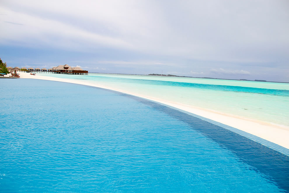 Infinity Pool at Anantara Dhigu Maldives