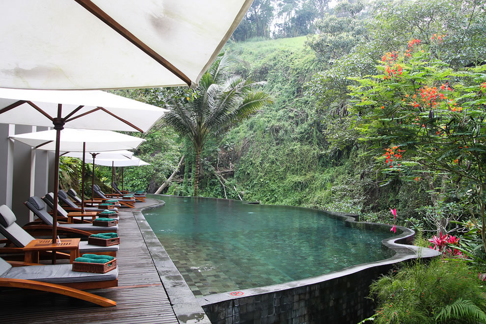 Infinity Pool at Maya Ubud Overlooking the Forest
