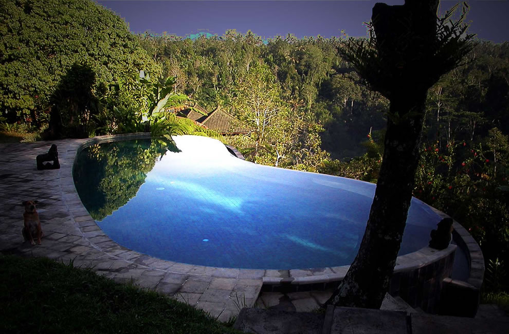 infinity pool at Murni's Villas in bali