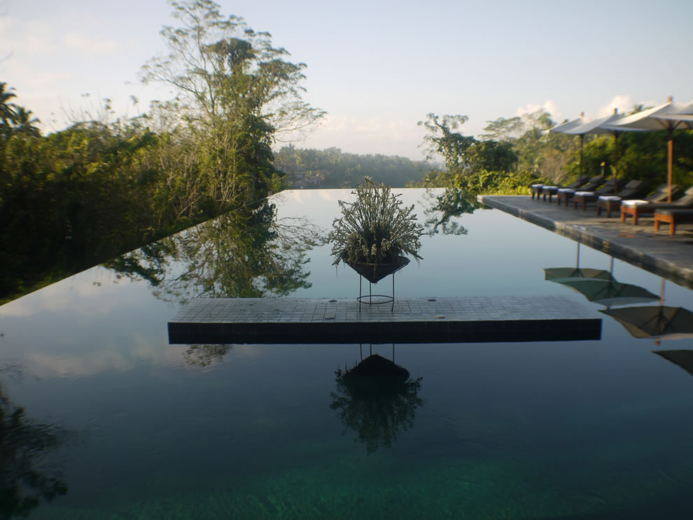 Infinity pool honeymoon Alila Ubud Bali