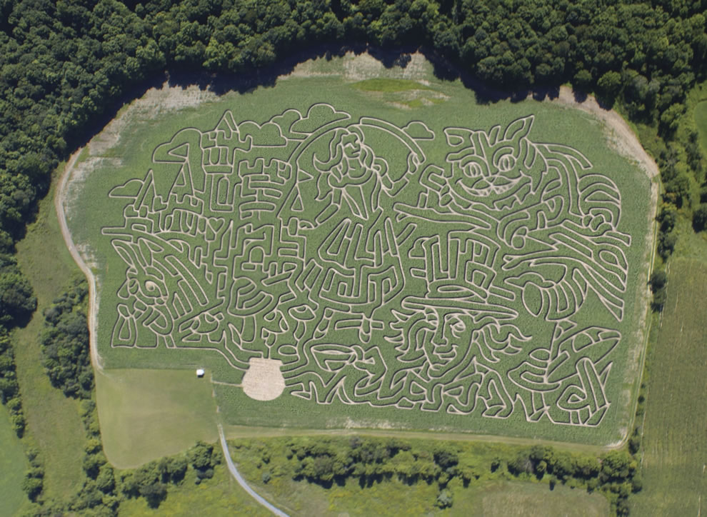Aerial photo of Alice in Wonderland and Chesire cat corn maze