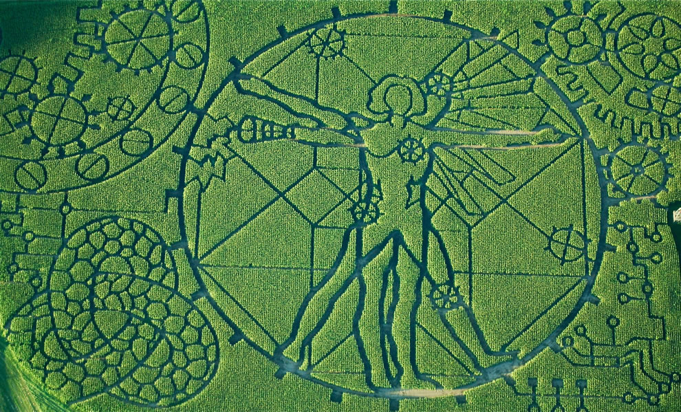 "Amazing corn maze at Treinen Farm -- technology-theme with complex additives of da Vinci's ""Vitruvian Man,"" part cyborg, steampunk, medicine and math"