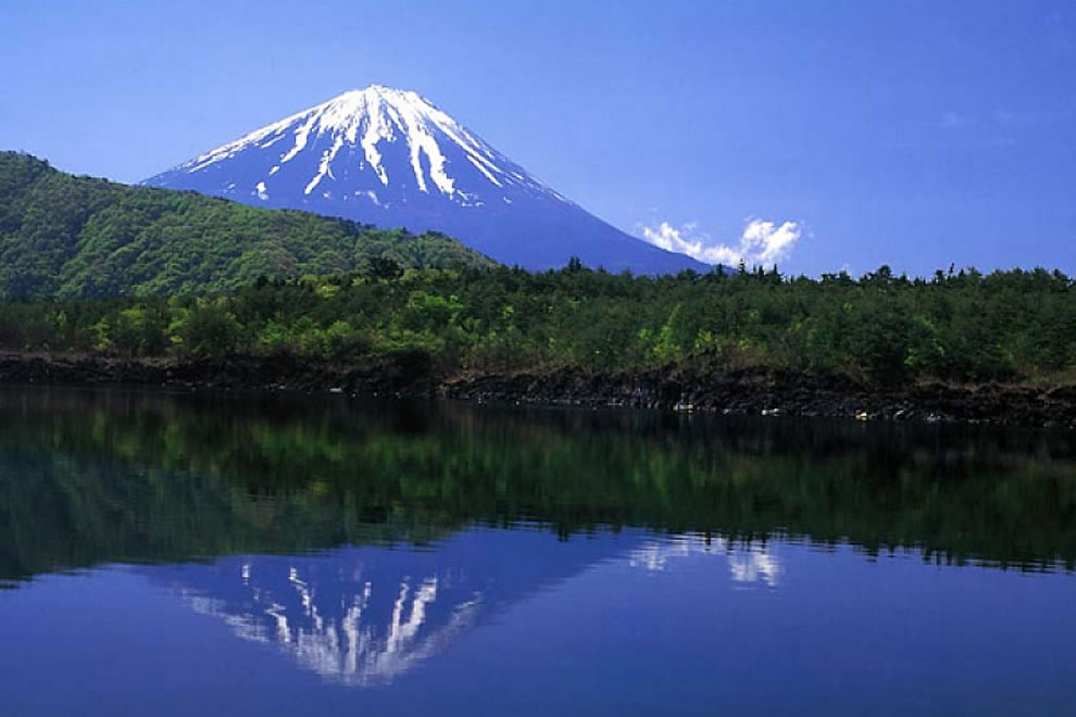 Suicide Forest and Mt Fuji -- Aokigahara (?), also known as the Sea of Trees ( Jukai?), is a 35-square-kilometre (14 sq mi) forest that lies at the northwest base of Mount Fuji in Japan