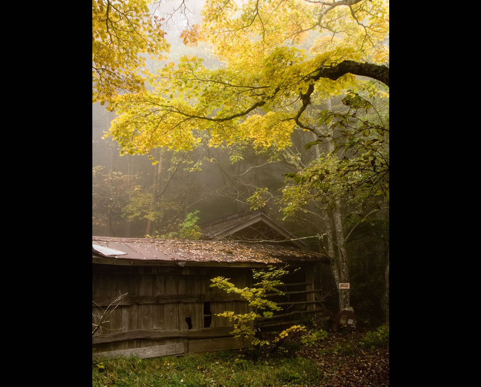 Silence is golden, the old hut at sangome (3rd station) of Mt. Fuji