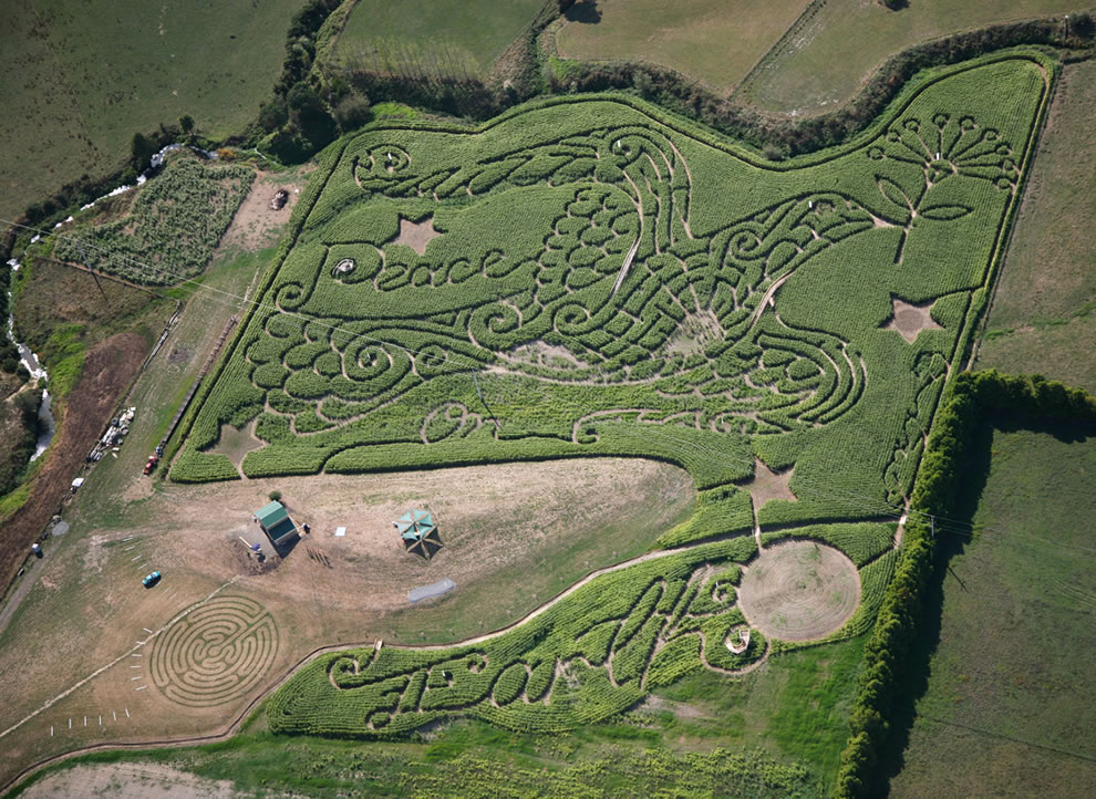 he Mount Gabriel Corn Maze at Drury in Auckland New Zealand. The theme was Peace on Earth