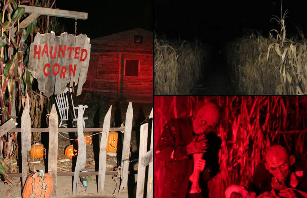 Very dark corridors of a haunted corn maze where hungry zombies jumped out to groan BRAINS