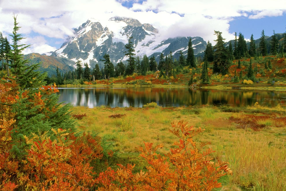 Fall season foliage at Mount Shuksan North Cascades in Washington