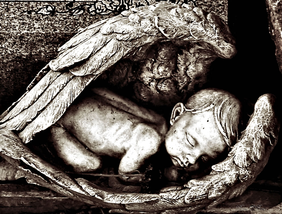 Baby in Angels wings - Sleep in Heavenly Peace