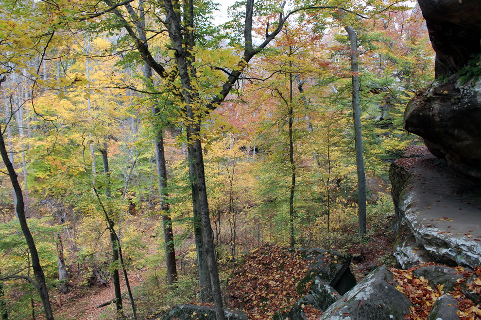 Climbing at Pounds Hollow
