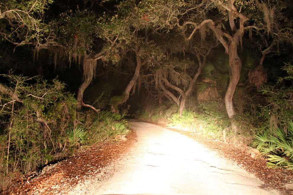 Driving Cedar Key at night