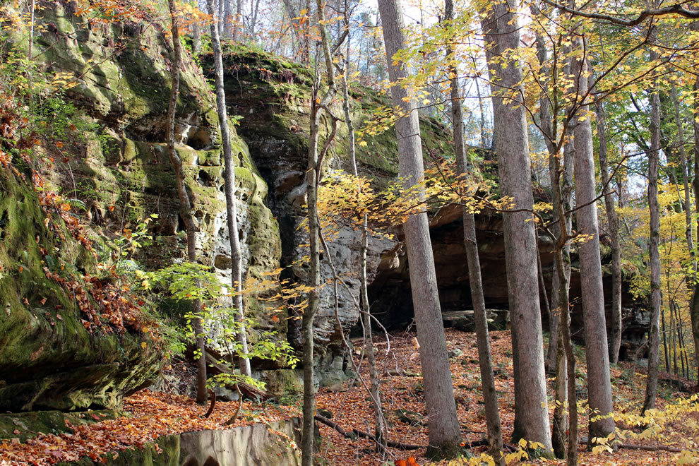 Hidden caves in mossy sandstone at Pounds Hollow