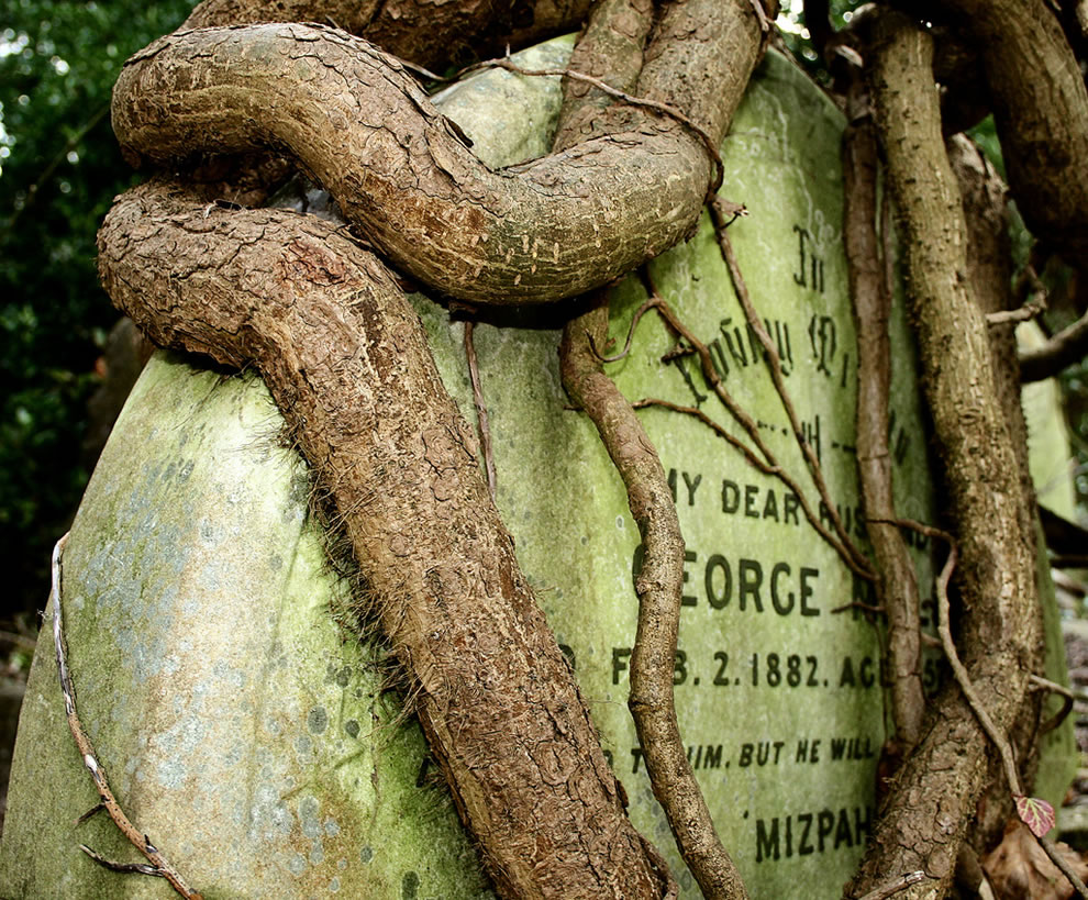 Highgate Cemetery in North London is full of old graves like this